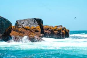 Yoga & Juliet, Galapagos, Isabela, Meer