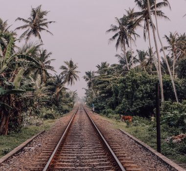 Yoga Retreat Sri Lanka Oktober 2020